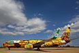 Боинг-737 бразильской авиакомпании Gol, на котором будет перемещаться национальная сборная Бразилии по футболу во время чемпионата мира. 2014