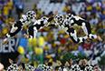 Церемония открытия ЧМ 2014 по футболу