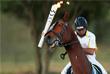 Участник этапа эстафеты в столице Бразилии провез факел верхом на лошади