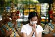 За пределами материковой части КНР пять случаев заболевания зафиксированы в Гонконге, два - в Макао, три - на Тайване. Четыре заболевших обнаружены в Таиланде, по два - в Японии, Южной Корее, США, Вьетнаме, по три - в Сингапуре, Франции и Малайзии, по одному - в Непале и Австралии.