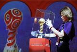 Сенатор допустил отмену матчей Кубка Конфедераций в Петербурге