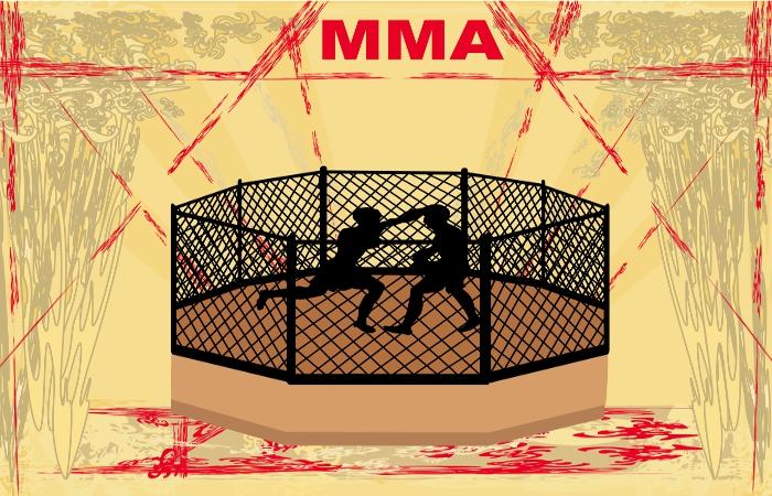 В Минспорте РФ выступили против детских боев MMA в Грозном