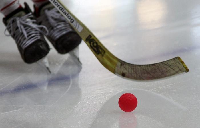 Приложения в Google Play – Хоккей Живые Обои (живые фоны и темы)   450x700