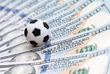 Федерация футбола Украины решила компенсировать хорвату Вукоевичу штраф ФИФА