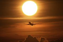 Переговоры о возобновлении международного авиасообщения в РФ начнутся 15 июля
