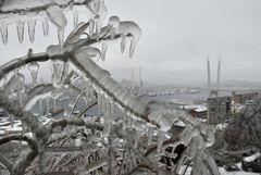 Прокуратура вынесла представление мэру Владивостока после ледяного шторма