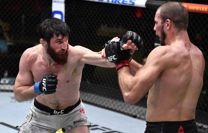 Россиянин Анкалаев победил украинца Крылова на турнире UFC в Вегасе