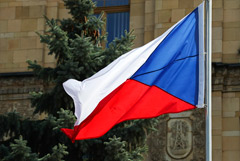 В Чехии заявили, что не объявляли Петрова и Боширова в розыск