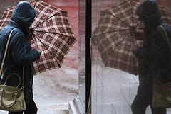 Ветер повалил в Москве почти 70 деревьев и повредил более 25 машин