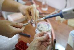 Гинцбург заявил, что российские вакцины от COVID-19 проходят строгую проверку